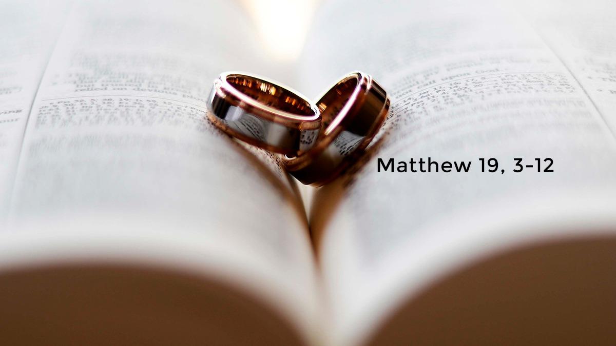 Matthew 19,3-12 | Digital Catholic Missionaries (DCM)